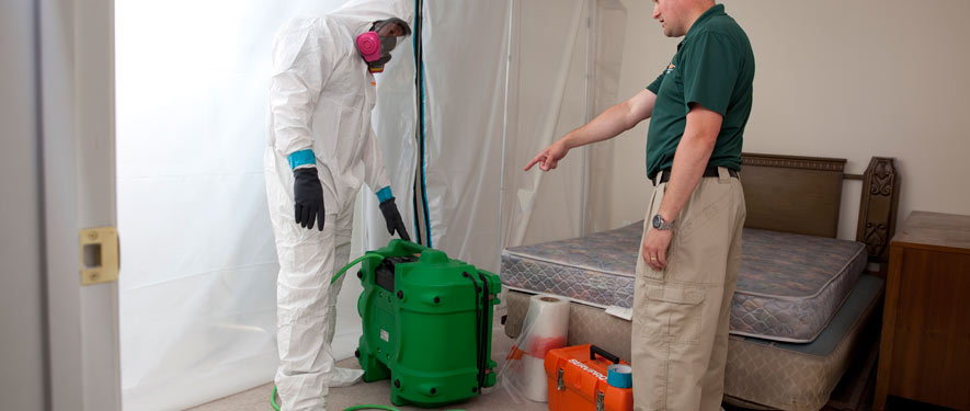 Anaheim, CA mold removal process